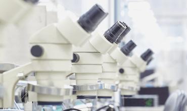 white microscopes